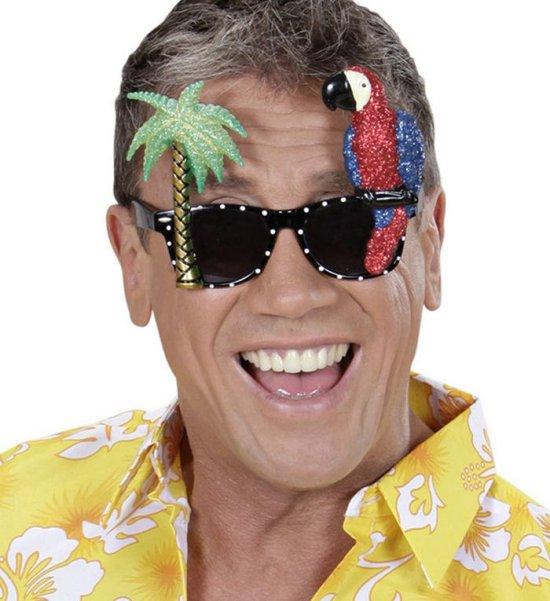 Papegoeje Briller Tilbehoer