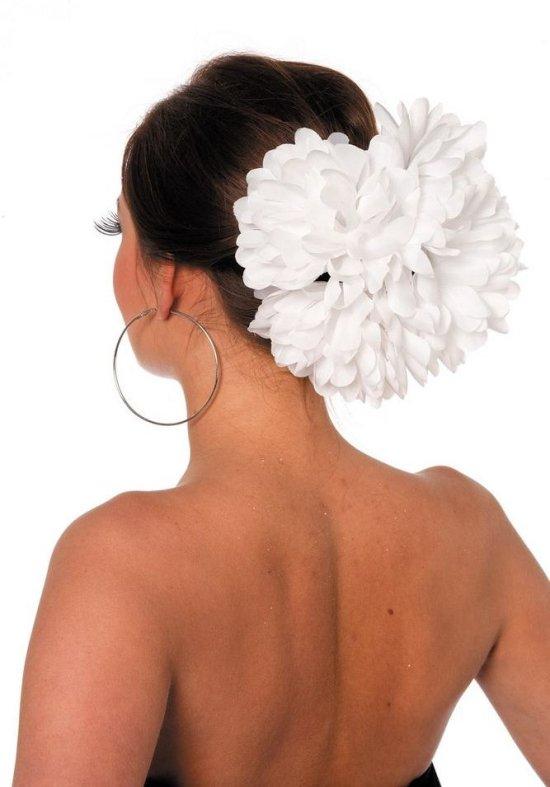 Stor haarblomst, hvid Tilbehoer