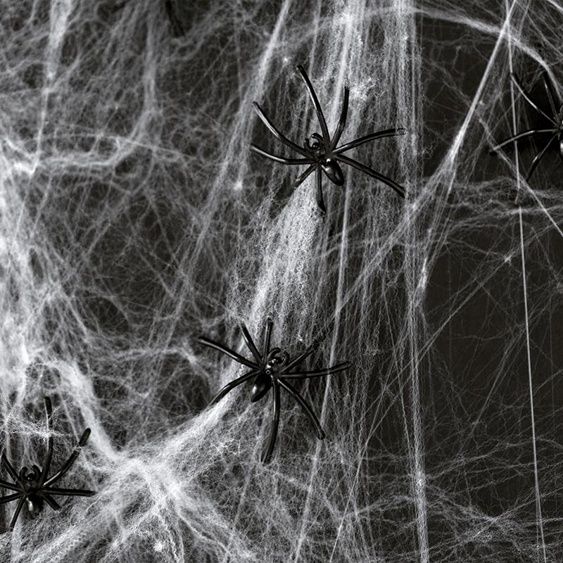 Falsk Spindelvæv