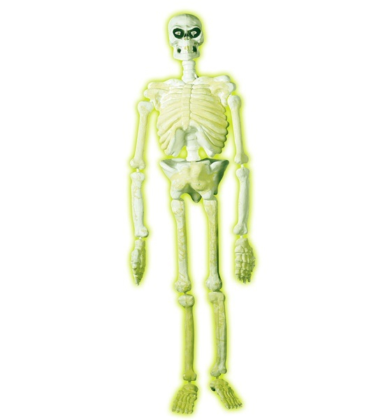 Glow in the dark skelet dekoration