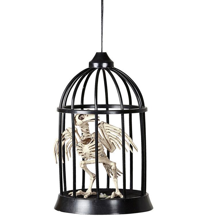 Krage Skelet i Bur