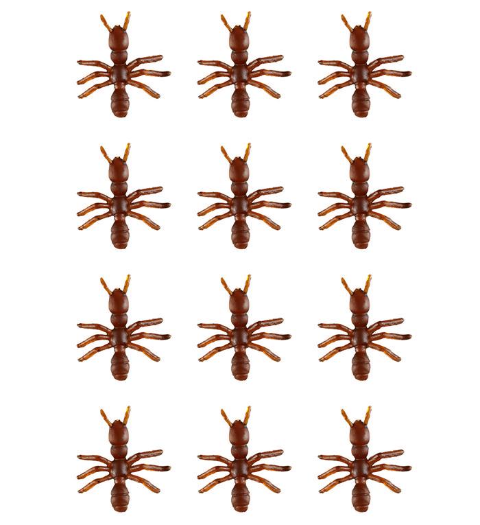 Sæt med Myrer