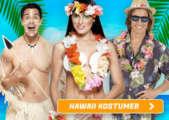 Hawaii Kostumer I Temashop.dk